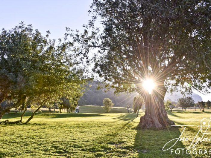 Campo La Sella Golf, al amanecer